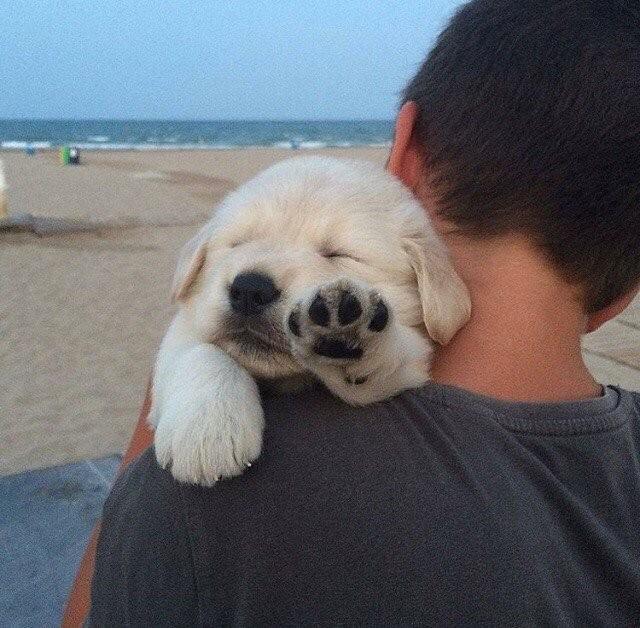 После сложного дня на пляже