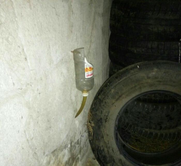 Туалет гаражный Скриншот, Текст, Фотография, Длиннопост