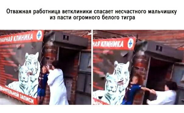 """Ветеринар побила подростка за """"испорченный"""" рекламный баннер. Избиение, Подростки, Барнаул, Ветеринар, Видео, Длиннопост"""