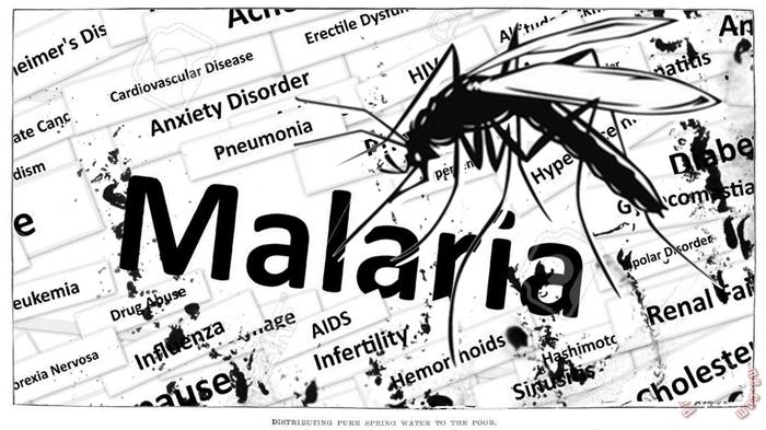 Малярия - [История Медицины] Малярия, Медицина, История, История медицины, Паразиты, Микробиология, Наука, Лонгрид, Видео, Длиннопост