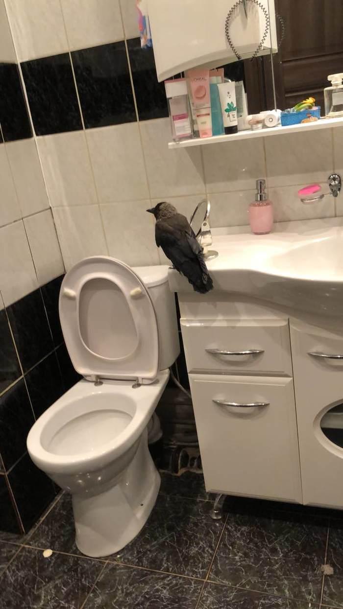 Мужчины подруги моются в ванной
