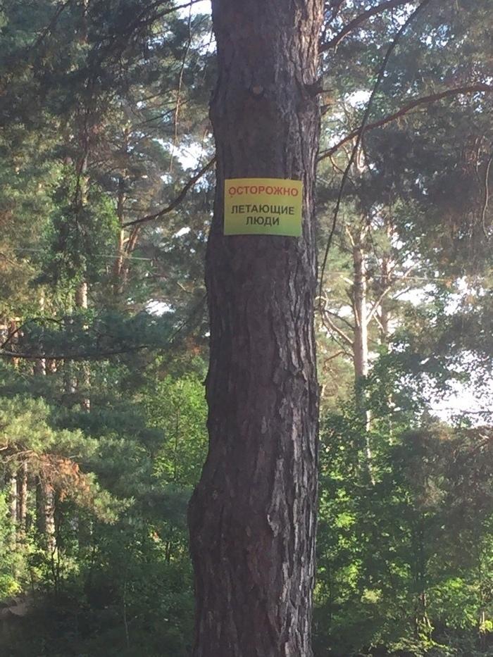 Будьте осторожны Честно украдено, ВКонтакте, Парк, Странности, Надпись, Дерево