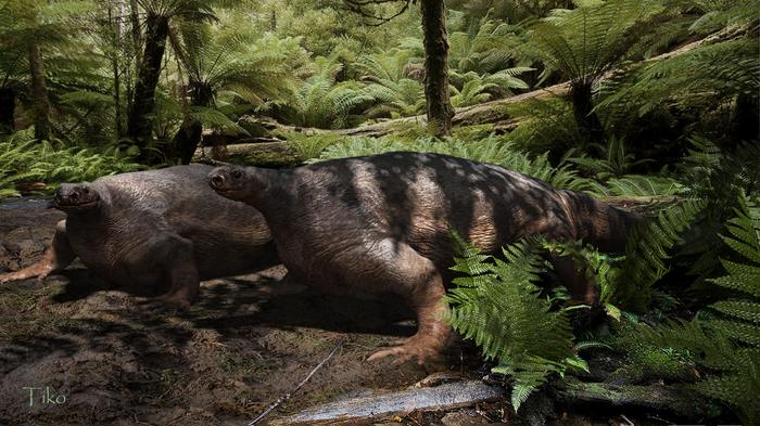 Котилоринх Zbrush, 3ds max, Фотоманипуляции, Пермский период, Доисторические животные, Копипаста