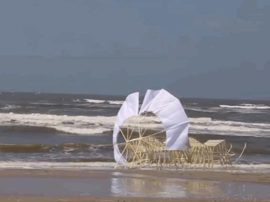 Выглядит пугающе Тео Янсен, Пляж, Кинетическая скульптура, Механизм, Гифка