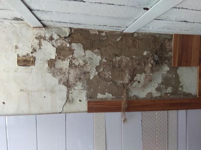 Лига строителей на помощь.  нужен совет Строительство, Дерево, Гараж, Длиннопост