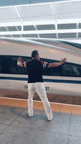 Секрет скорости китайских поездов