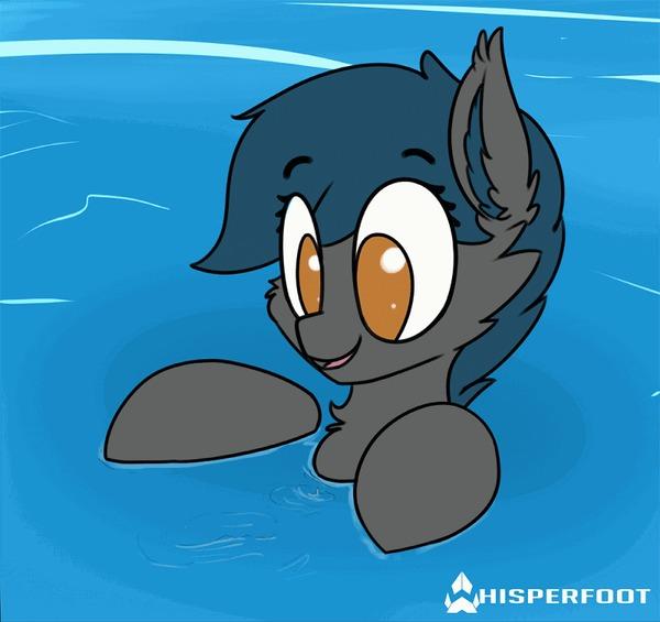 Глупое мышепоне Batpony, My Little Pony, Whisperfoot, Гифка