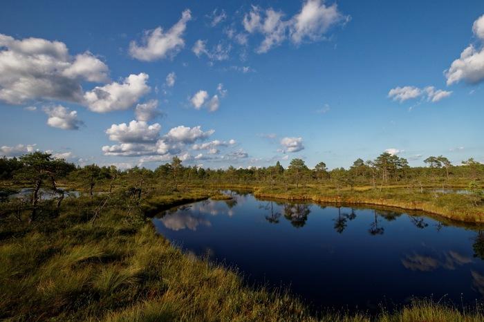 Мои фотографии природы Эстонии Фотография, Эстония, Природа, Длиннопост