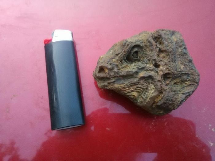 Этот камень похож на игуану