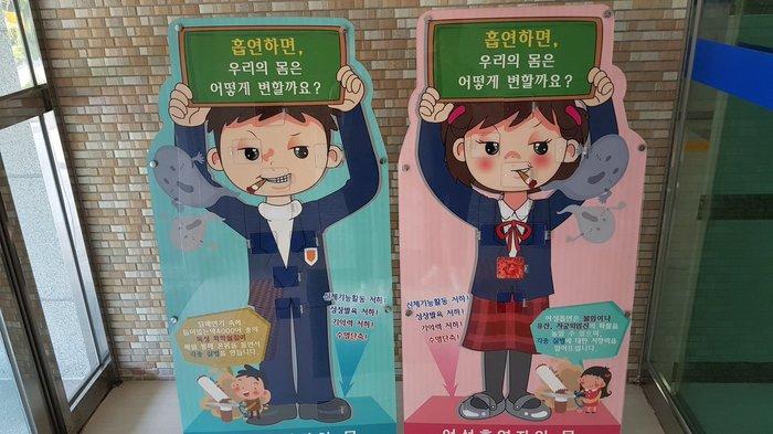 Антитабачная агитация в южнокорейских школах Южная корея, Антитабачные картинки, Школа, Фотография, Действенная методика