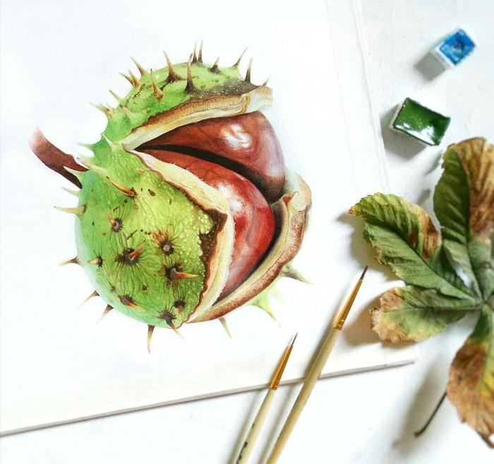 На волне наступившей осени Ботаническая иллюстрация, Акварель, Рисунок, Осень, Каштан, Реализм