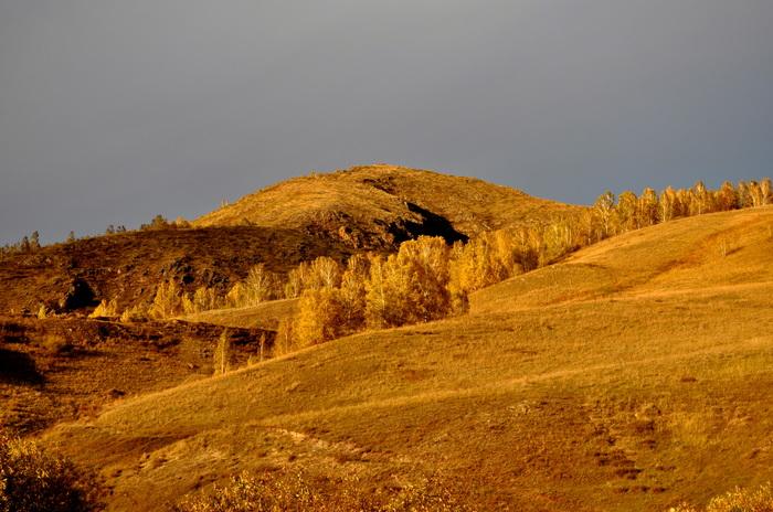 Осенний свет Фотография, Красноярский край, Свет, Осень, Моё, Длиннопост