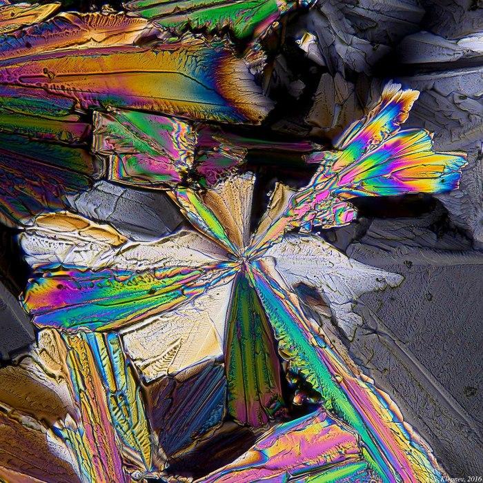 Кристаллы из Фанты Микроскоп, Поляризация, Кристаллы, Длиннопост