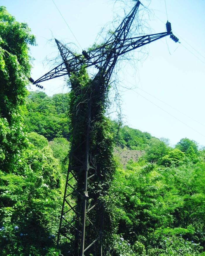 Величие природы над цивилизацией (28 фото) Природа, Чудеса природы, Заброшенное, Длиннопост, Фотография