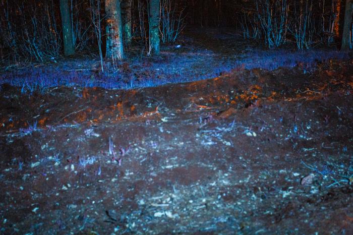 Ультрафиолет Фотография, Ночь, Ультрафиолет, Длиннопост