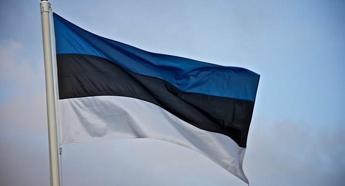 Когда у торгового терминала не тот цвет настроения Метро, Терминал, Баг, Санкт-Петербург, Цвет настроения синий, Флаг России, Длиннопост