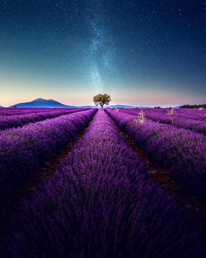Звёздное небо и космос в картинках - Страница 26 1537112013170595898