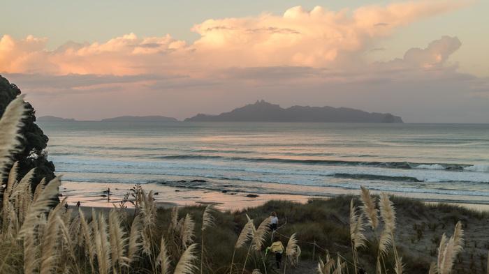 Пляж. Новая Зеландия.