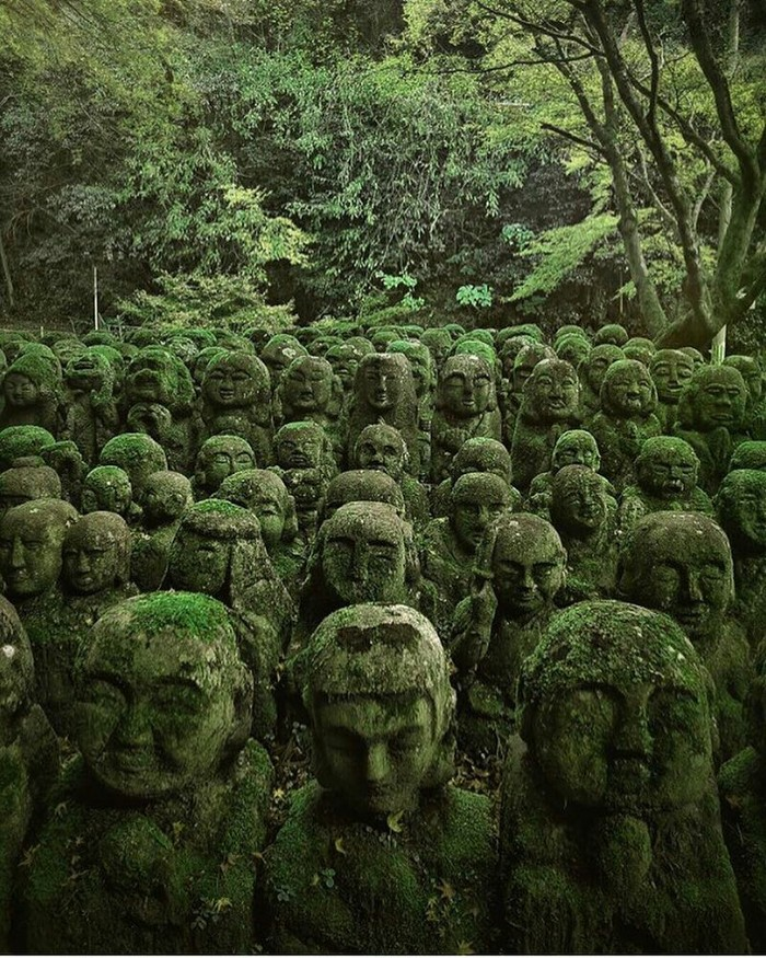 Заросшие мхом Японские статуи.