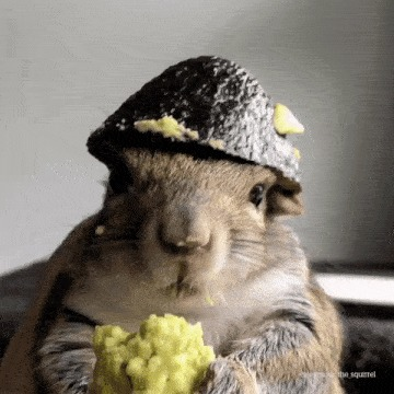 Капитан авокадо