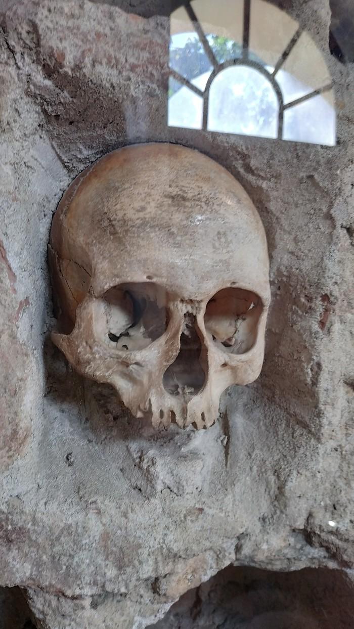Концлагерь и башня черепов в Сербии. История, Нацизм, Геноцид, Длиннопост, Фашизм