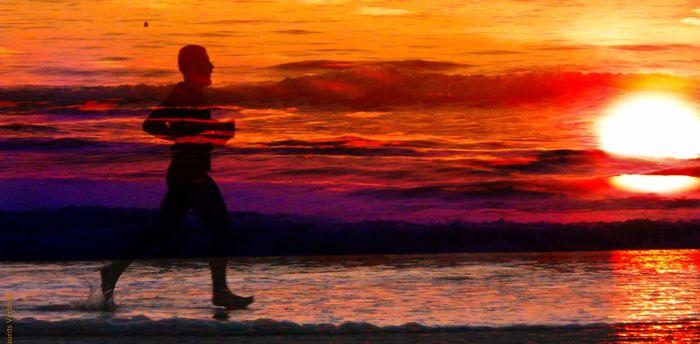 «Поломка» всего лишь одного гена у древних людей позволила нам бегать марафоны Выносливость, Адаптация, Мышцы, Мутация, Эволюция