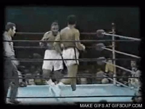 Раскрыта тайна: стало известно, как Брюс Ли учился боксу у Мохаммеда Али Бокс, Брюс Ли, Мохаммед Али, Гифка, Длиннопост, Джон Сэксон
