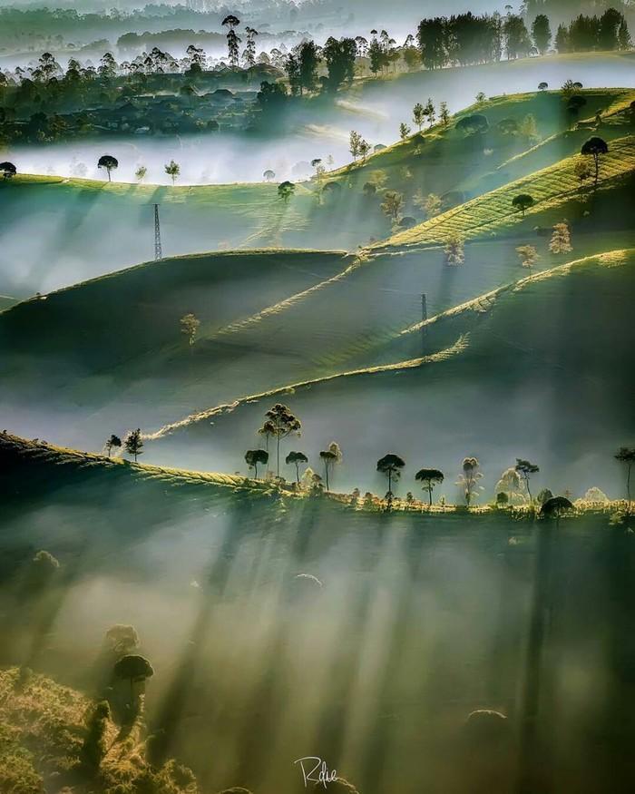 Природа Индонезии.