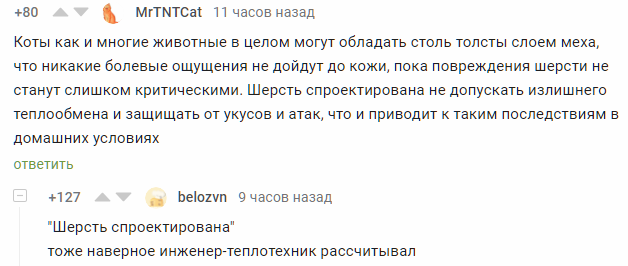 Техническая составляющая котиков Комментарии на Пикабу, Кот, Скриншот