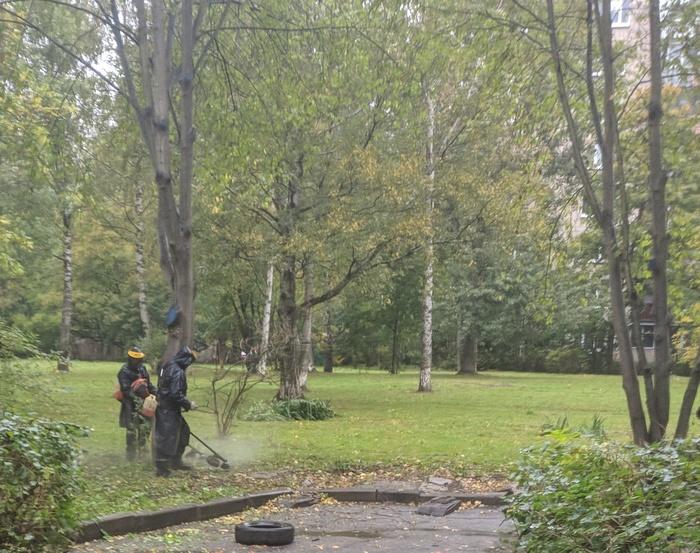 Косари Косари, Дождь, Фотография