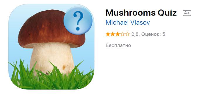 """Грибы - вопросы """"что за гриб"""" """"можно ли есть"""" Грибы, Что за гриб, Длиннопост"""