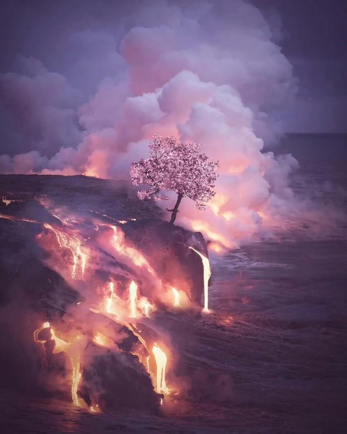 Ктосказалодинневоин? Извержения вулкана на Гаваях.