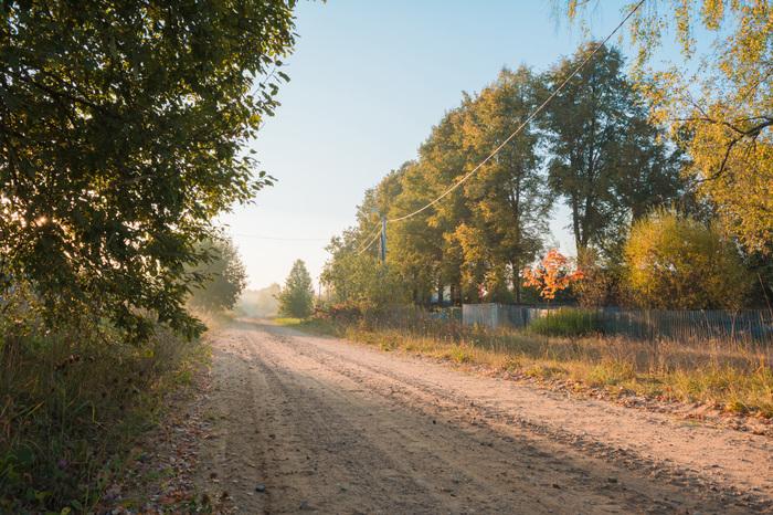 Рассветных лучей похождения Фотография, Пейзаж, Осень, Черно-Белое, Цветы, Сентябринка, Nikon d5200, 18-55 kit