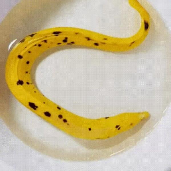 Банан в естественной среде обитания.
