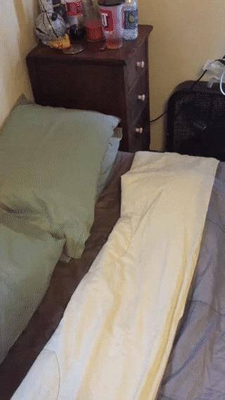 Что за фигня у меня в кровати?