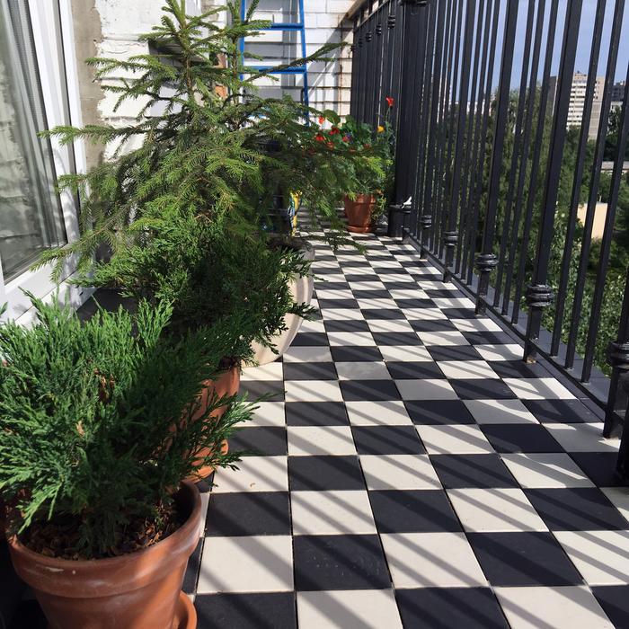 Тепло ль тебе, ёлочка? Длиннопост, Садоводство, Растения на балконе, Ёлки, Можжевельник, Брусника