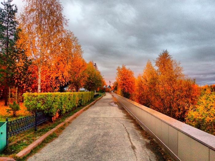 Любимый город осенью