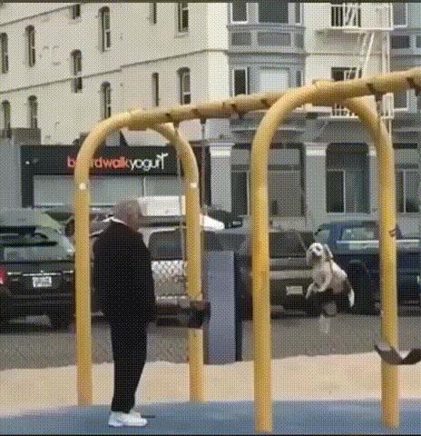 Старик во время прогулки катает свою собаку на качелях