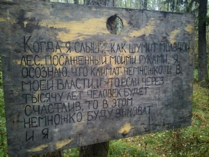 Чехов в лесу Экология, Цитаты, Лес, Чехов, Осень, Подмосковье