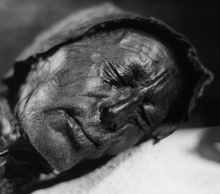 «Мертвецы из трясины». Откуда в европейских болотах тысячи зверски убитых людей Истории, Длиннопост, Мумия, Торфяники