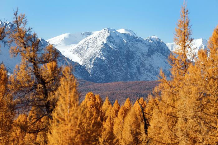 Алтайская сказка Горный Алтай, Пейзаж, Природа, Осень, Горы, Алтай, Красивое, Фотограф, Длиннопост