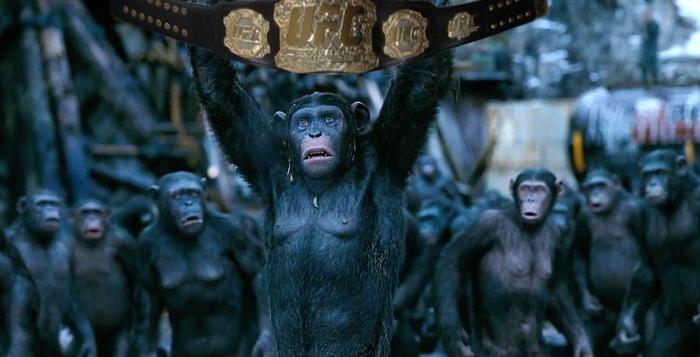 Главная новость свежего. Конор МакГрегор, Конор, Хабиб Нурмагомедов, Хабиб, UFC, Бой, Бои без правил, Mma