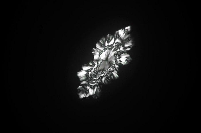 Кристаллы неизвестной природы Кристаллы, Вино, Длиннопост