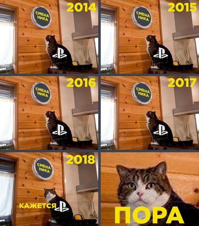 В PSN наконец появится смена ника. Игры, Игровой юмор, Sony, PSN, Playstation 4, Кот, Мару