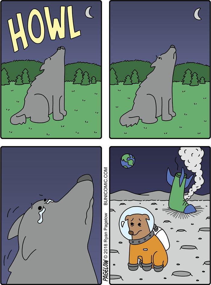 Причина воя на луну