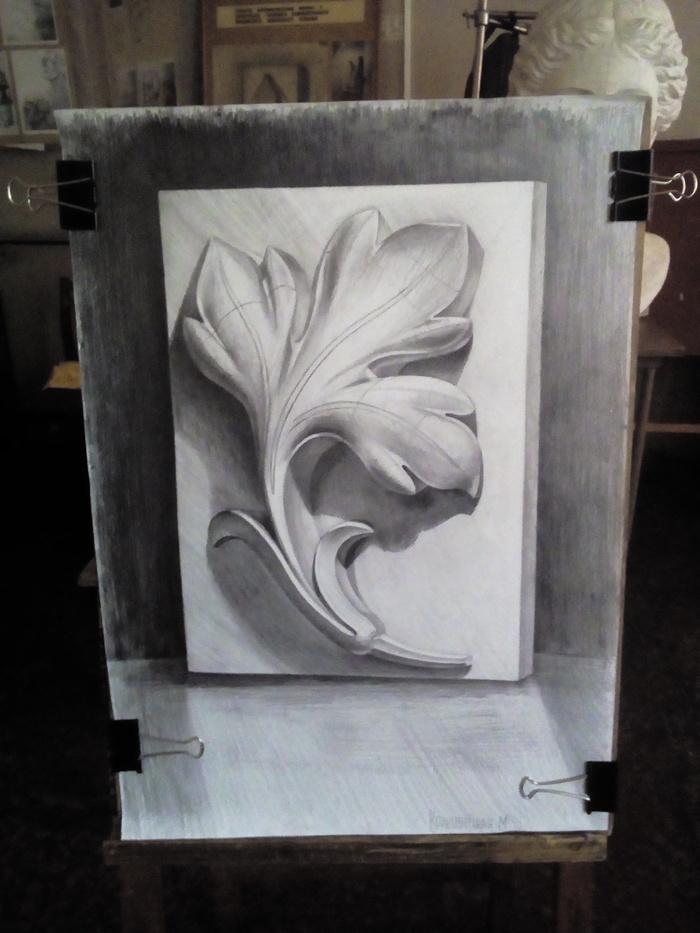 Рисунок гипсовой розетки высокого рельефа. Рисунок, Маша Кроен, КУХОМ, Рисунок карандашом, Карандаш, Академический рисунок