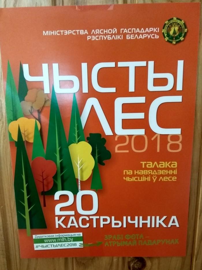 Чистомэнство на уровне целой страны Лига чистомена, Лес, Беларусь