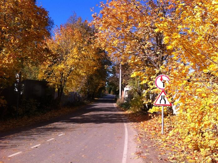 Просто осень в подмосковной Кубинке Осень, Природа, Кубинка, Новый городок, Подмосковье, Длиннопост