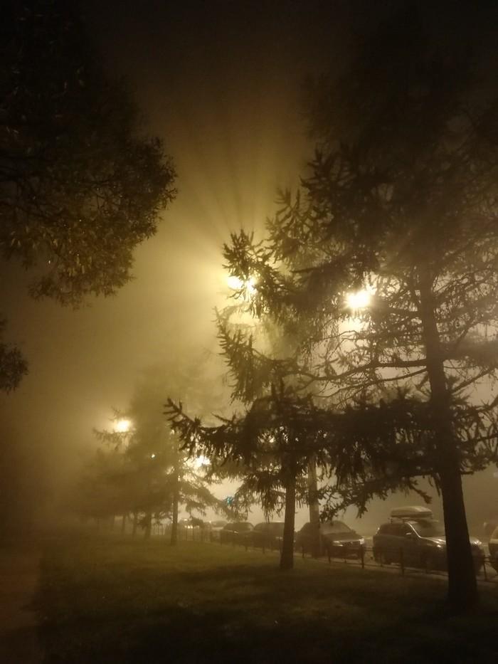 В Петербурге сегодня туман