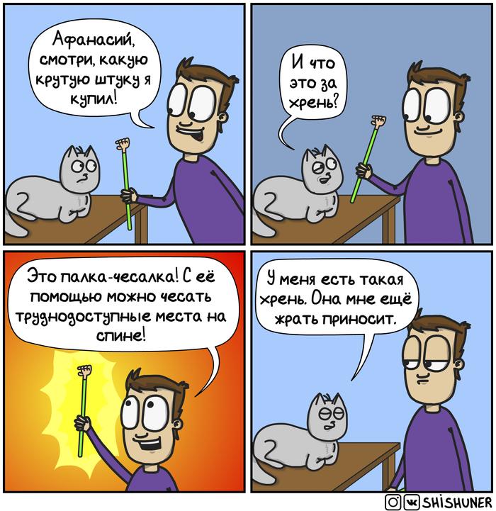 Обобщил... Шишунер, Комиксы, Кот
